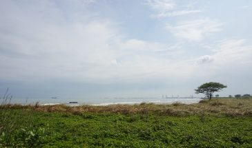 Mini Trekking- Tepi Laut