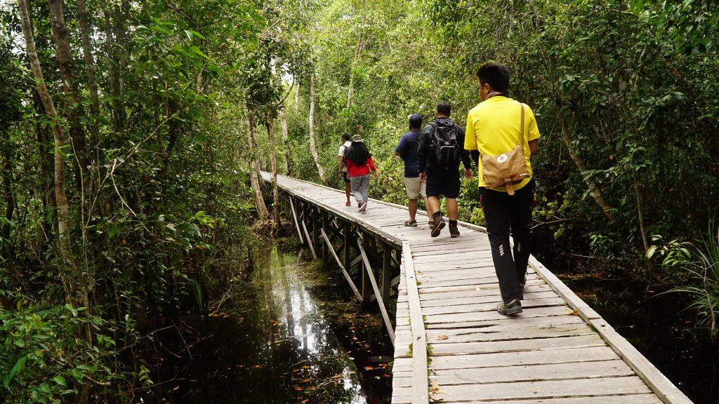 Jalan kaki di Borneo